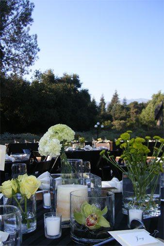 botanic-garden-0055