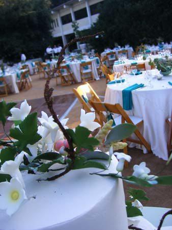botanic-garden-0068