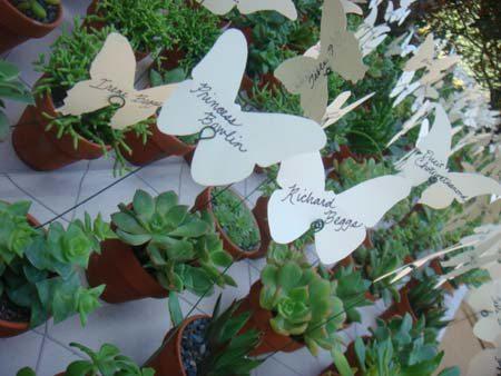 botanic-garden-0096