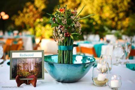 botanic-garden-0065